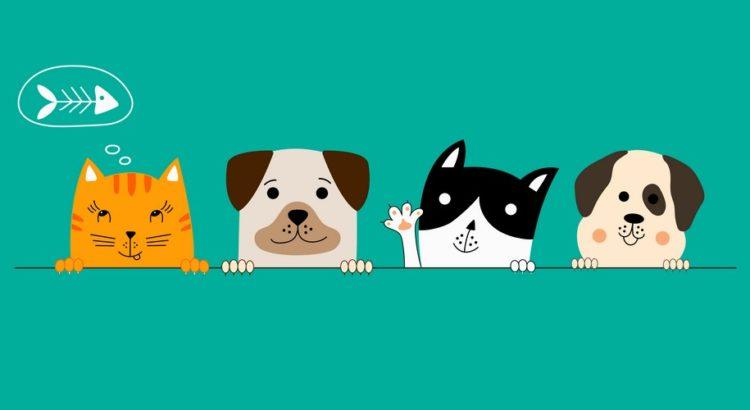 To hunde og to katte